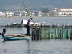λιμνοθάλασσα αλιεία