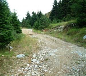Τμήμα χωματόδρομου στο ορεινό Θέρμο: Η κυρίαρχη πραγματικότητα του οδικού δικτύου στο ορεινό Θέρμο, όπως αυτή προκύπτει από το εκτεταμένο δίκτυο των υποτυπωδών χωματόδρομων που συνδέουν τα χωριά της περιοχής.