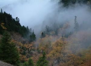 Φθινόπωρο στις πηγές του Κοσινορέματος Γιδομανδρίτη: Τοπίο στην ομίχλη που προσομοιάζει με τις προοπτικές επίλυσης του προβλήματος των οδικών συνδέσεων του ορεινού Θέρμου.