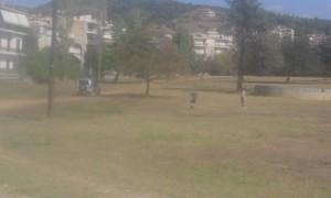 πάρκο (3)
